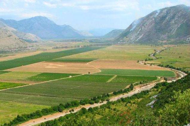Чолић: Ускоро наводњавање требињског поља